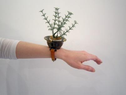 盆栽時計 ¥12000