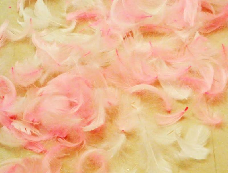 Pinkfeather